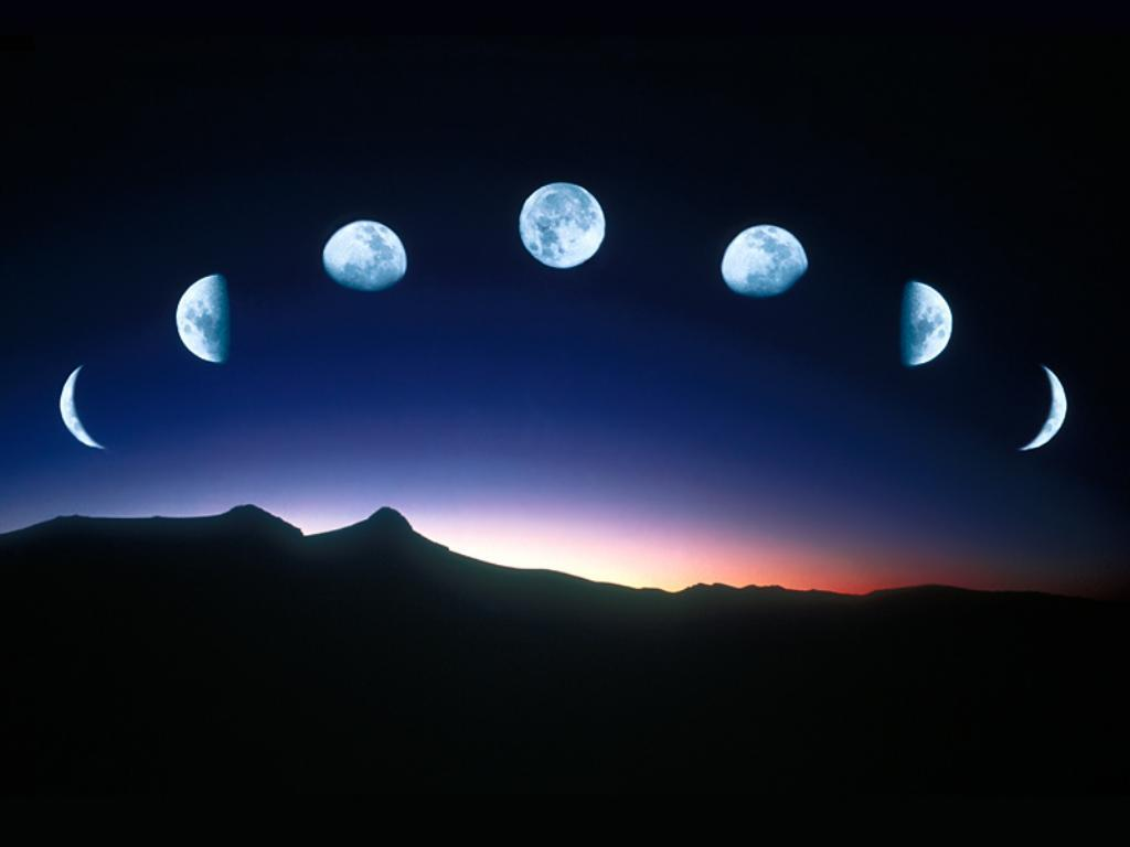 Waning Crescent, First Quarter, Waxing Crescent, New Moon...