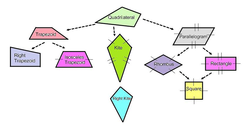 Quadrilateral Flow Chart Quadrilateral Family T...