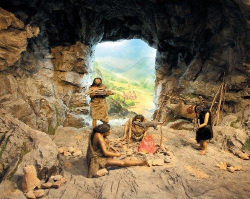 Stone Age Clothing  Stone Age Food  Stone Age Tools  Sto