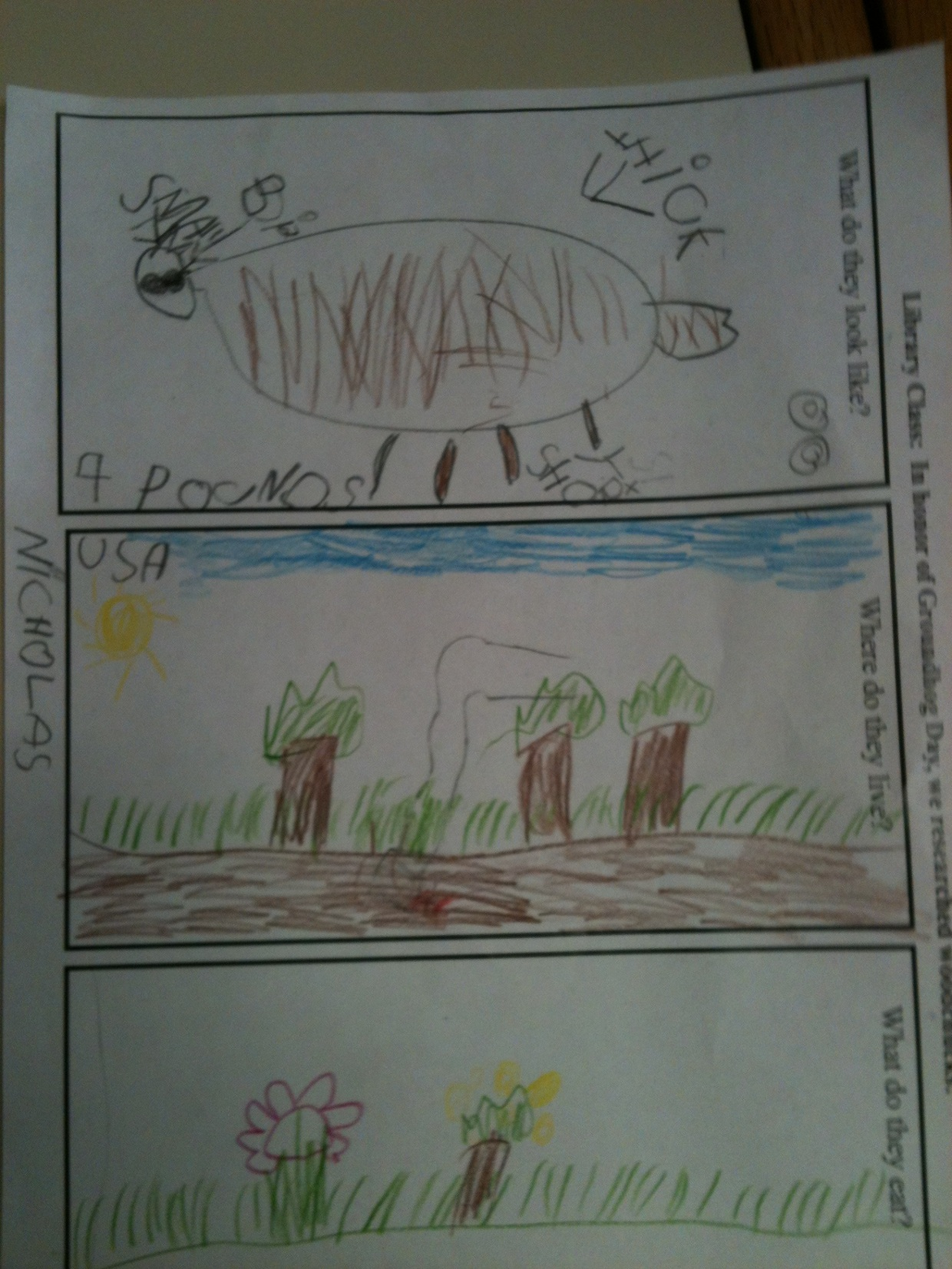 Teaching note-taking with kindergarten students for Groun...