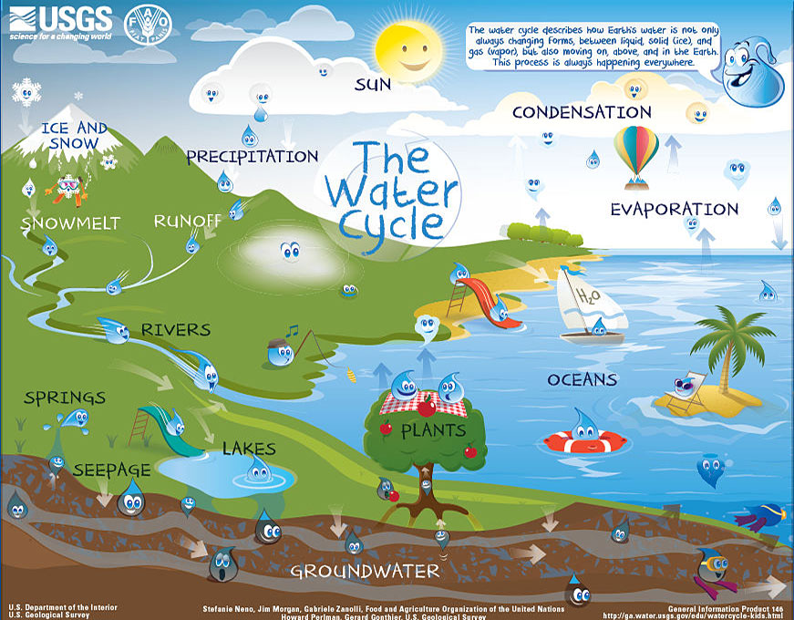 Water Usgs Gov  Edu  Watercycle