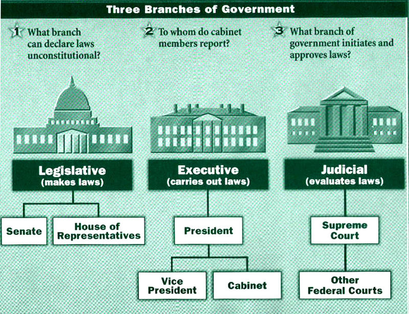 branch of government How can the answer be improved.