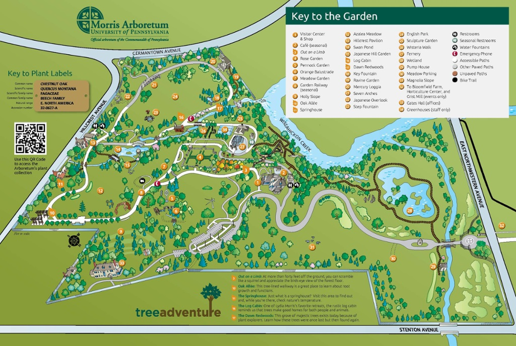 What S In Bloom Map April Morris Arboretum