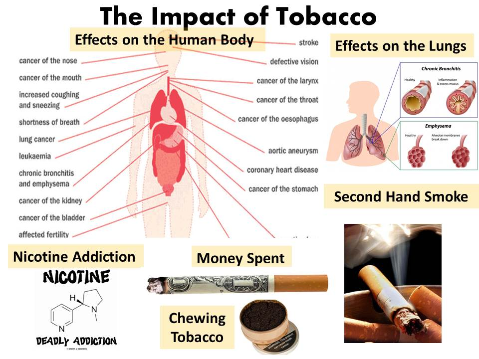 the negative effects of tobacco Dangers of smoking are common knowledge, including lung cancer, heart disease and lots of other life-threatening health conditions as a well-known component of cigarette smoke, nicotine is often blamed for its negative effects.