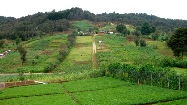 News - Agriculture and Natural Resources