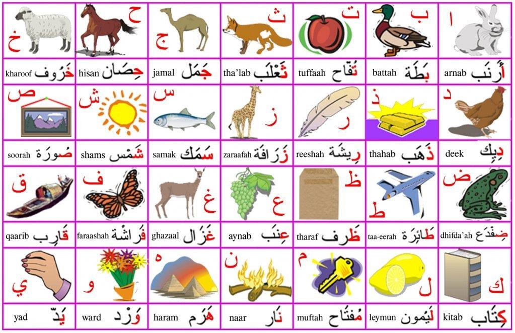 تعليم الارقام العربية للاطفال pdf