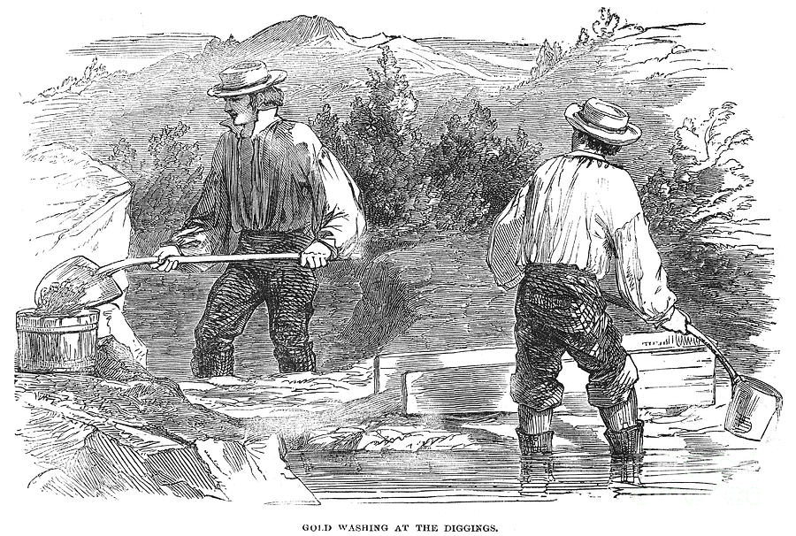 an overview of the gold rush in california The gold rush had the effect on california of bringing a largenumber of settlers to the area in a short period of time this alsocaused many small towns what effect did the gold rush have on the growth of california among the so-called forty-niners, the prospectors who flocked to california in 1849 in.
