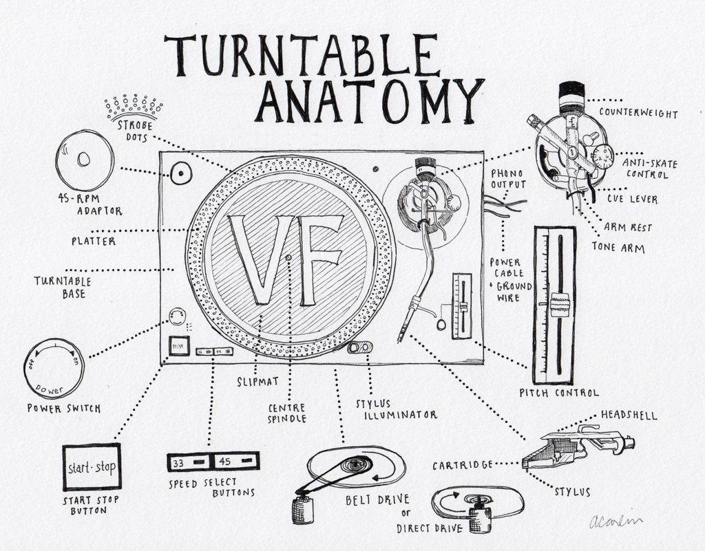 Anatomía de un vinilo - Vicious Magazine