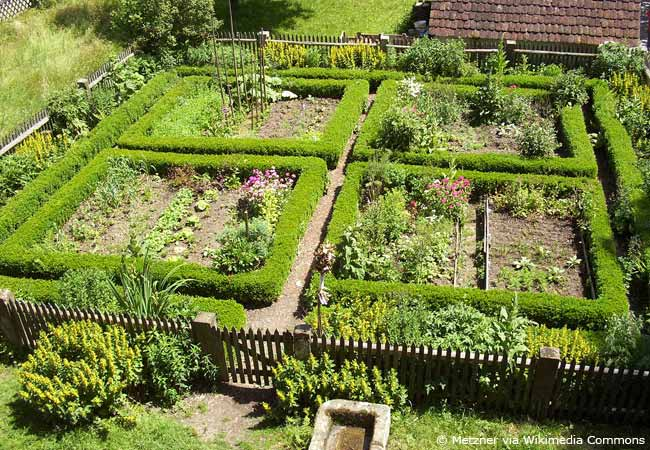 bauerngarten anlegen – anleitung zur gestaltung und pflanzwahl, Garten seite