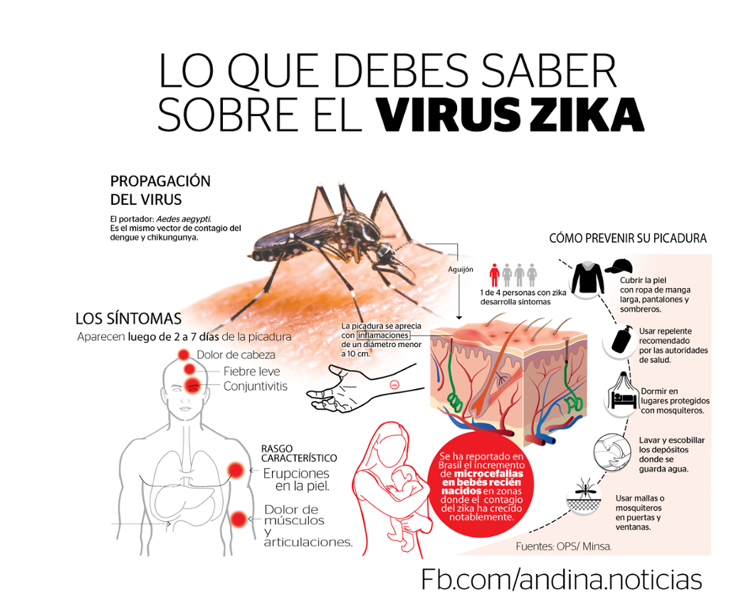 Excepcional Zika: YJ29