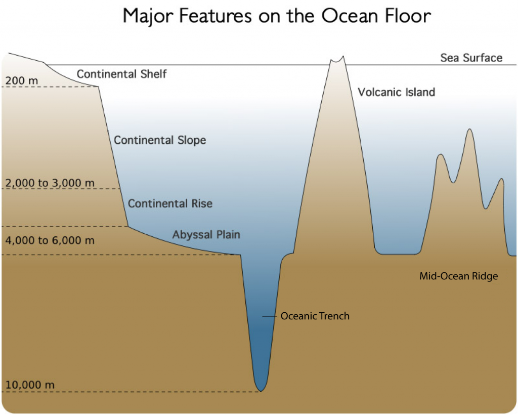 Features of the ocean floor thinglink for Ocean floor description