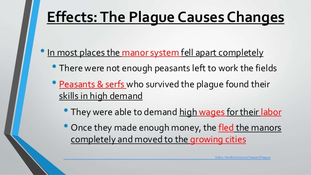 black death cause and effect essay
