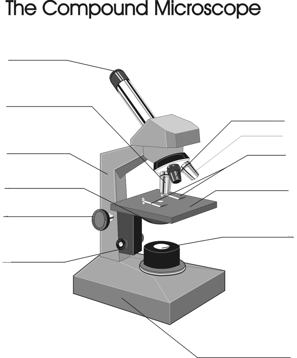 Worksheets The Compound Microscope Worksheet collection of the compound microscope worksheet bloggakuten bloggakuten