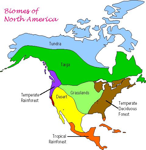 remix of biomes of north america thinglink