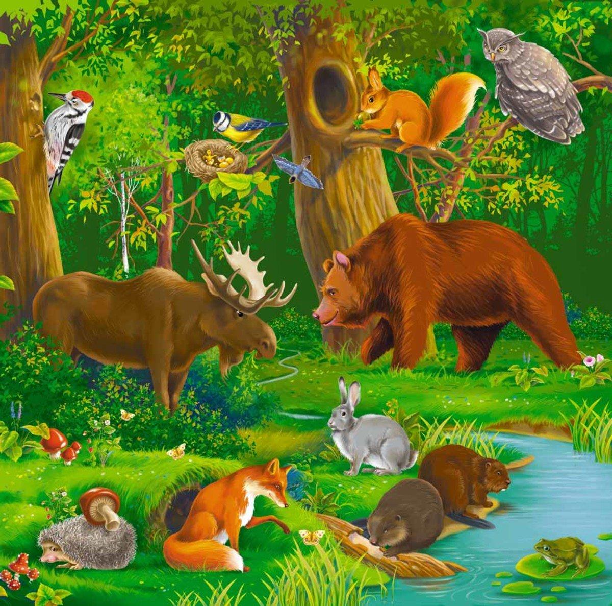 Картинки лесных животных для детей детского сада 3