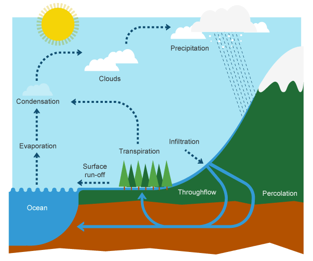the water cycle 3 essay