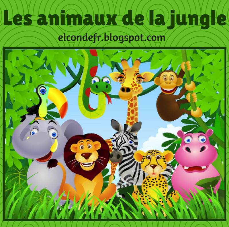 image animaux jungle
