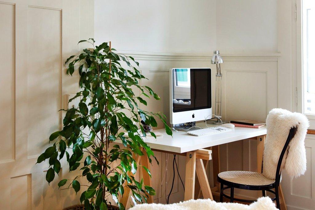 Die Arbeitsecke mit Computer und Zimmerpflanze