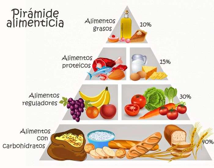alimenti proteici palestra