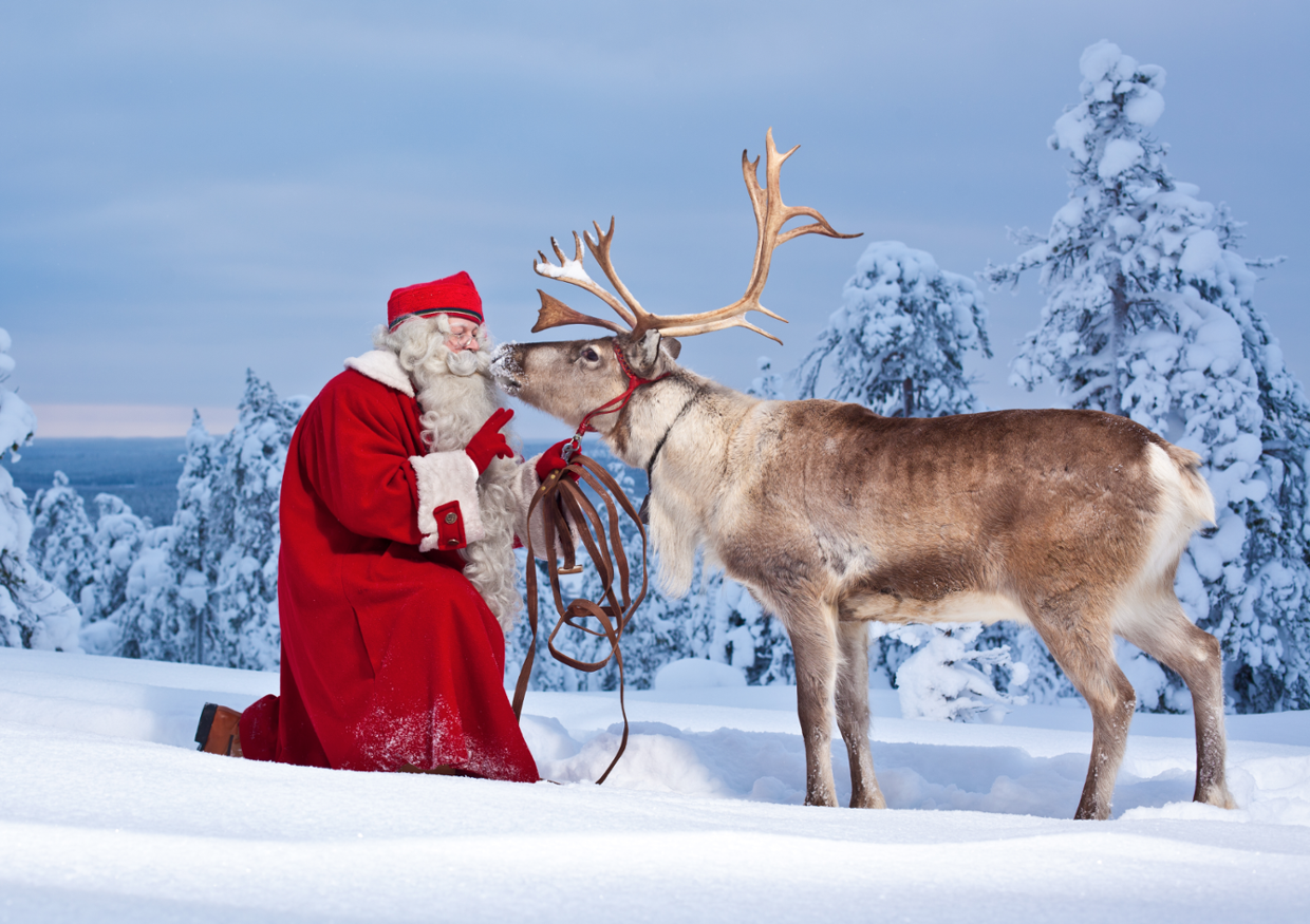 Top 5 Finnish Christmas foods - thisisFINLAND With so man...