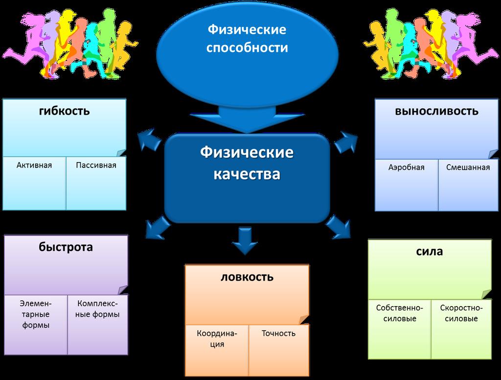 карта физических качеств