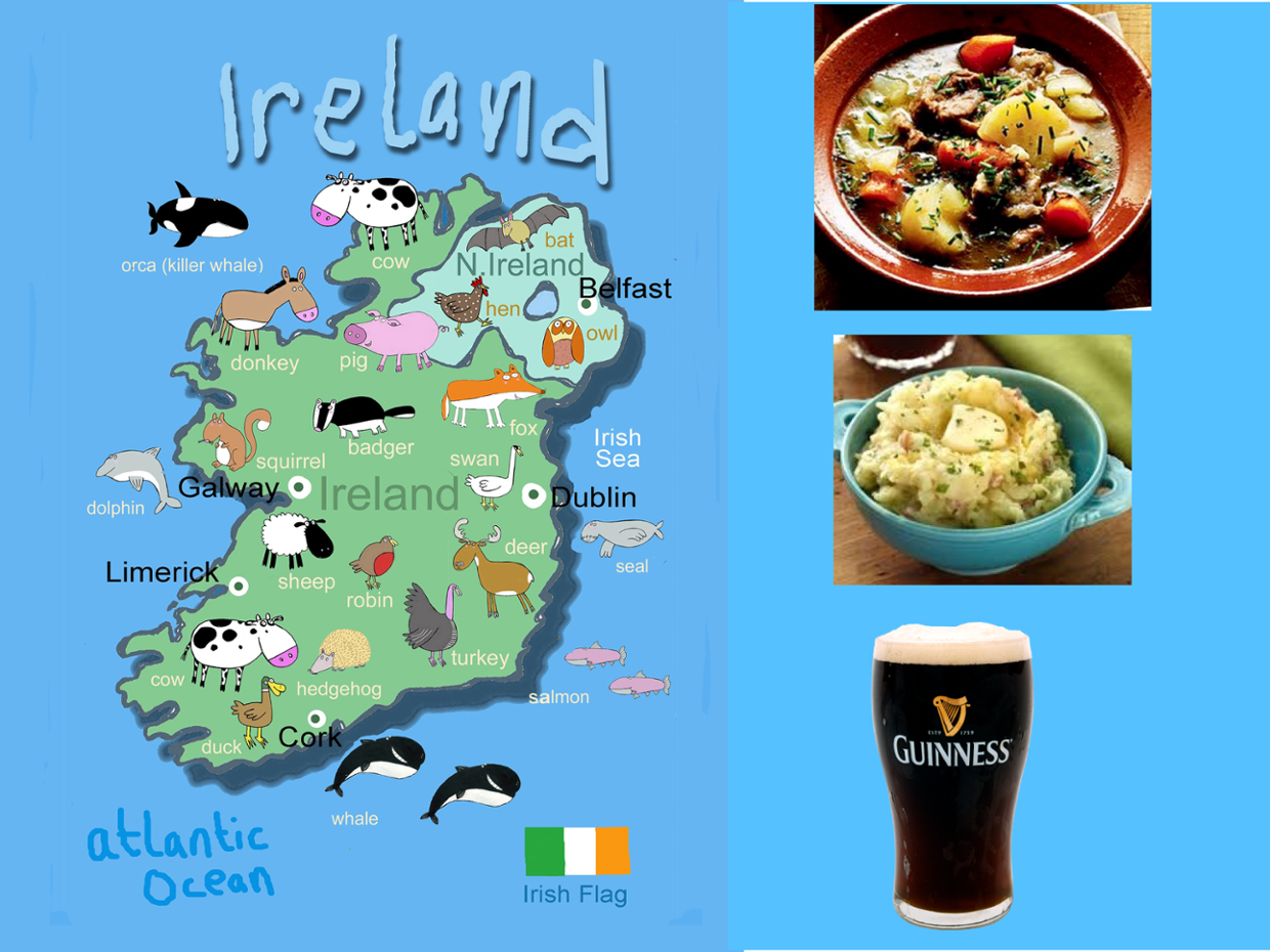 OUR TRIP TO IRELAND !