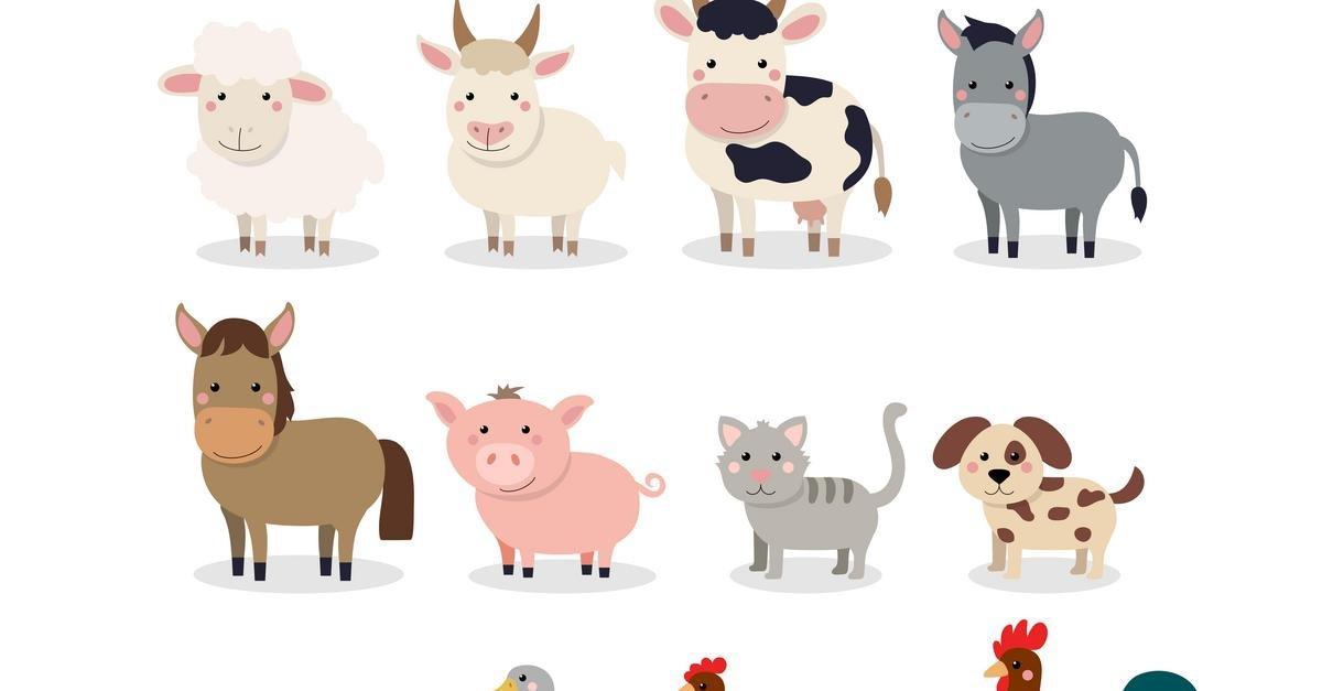 Zwierzęta na wsi