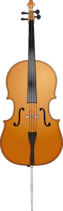 Cello Senior Project