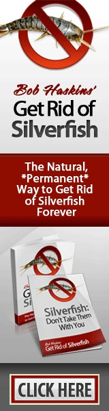 how to exterminat silverfish bugs naturally permanently. Black Bedroom Furniture Sets. Home Design Ideas