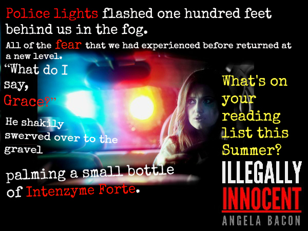 Summer Reading List: Illegally Innocent.