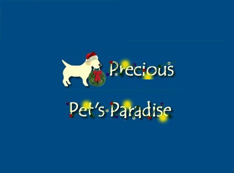 Precious Pets Paradise : Dog Beds