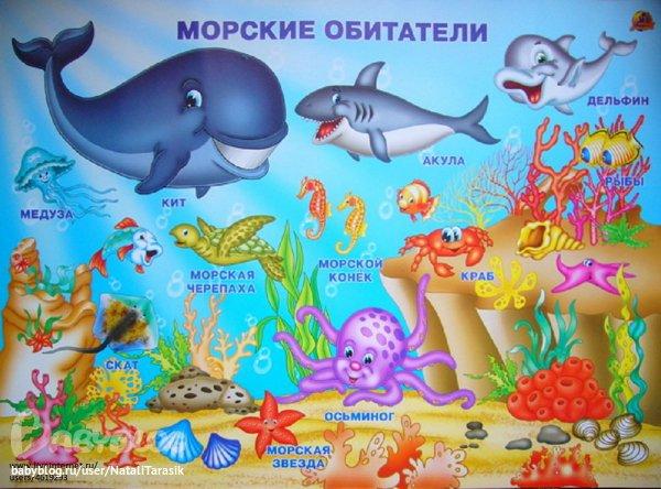 Картинка дна морского