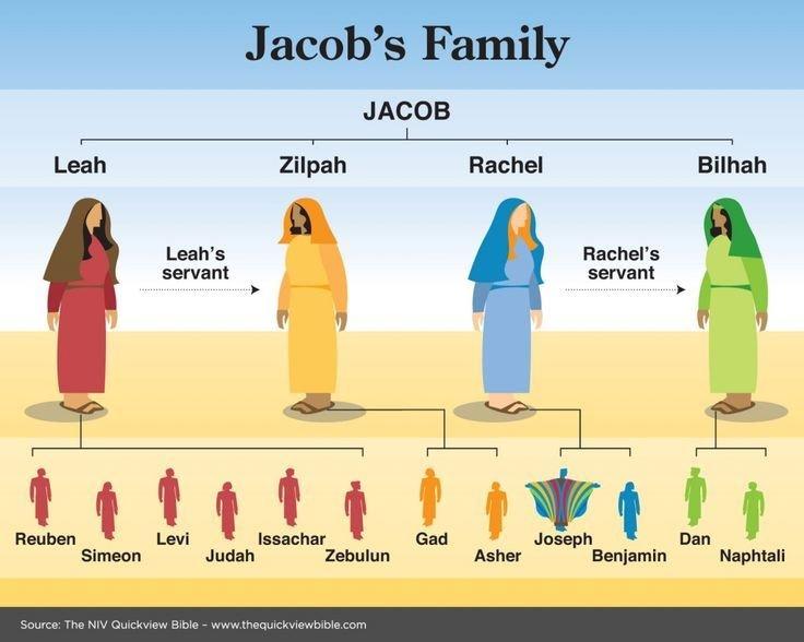 Jacob's Family Tree