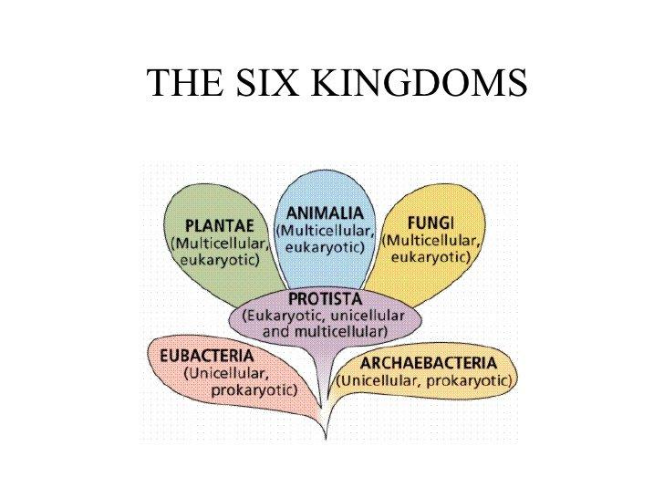 the six kingdoms thinglink. Black Bedroom Furniture Sets. Home Design Ideas