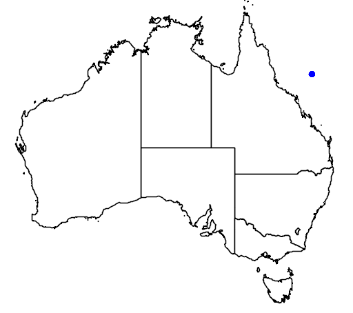 Gold Rushes Of Australia