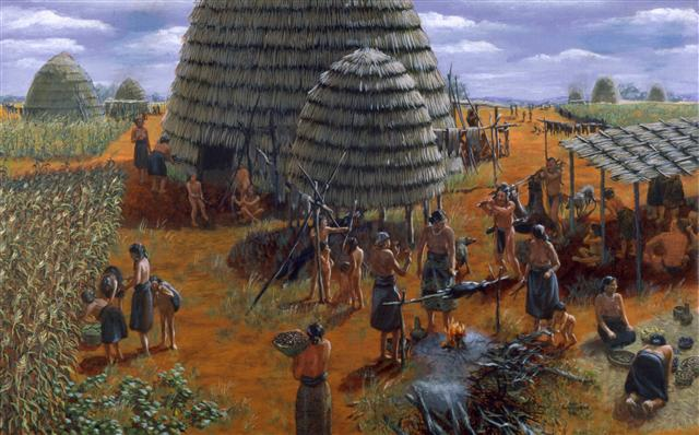 how did colonists interact with native americans indians The indians would be allowed,  the colonists did not grow enough corn to feed  • betty wood on why the english did not use native americans for their work.