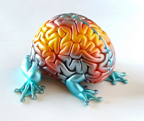 Your Brain on ThingLink
