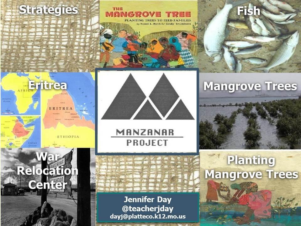 Dr. Sato, The Manzanar Project & The Mangrove Tree