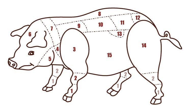 PIEDE: Ilpiede di maiale, opiedino, è un taglio di carn...