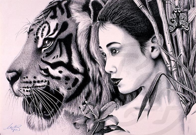 plot of the lady or the tiger