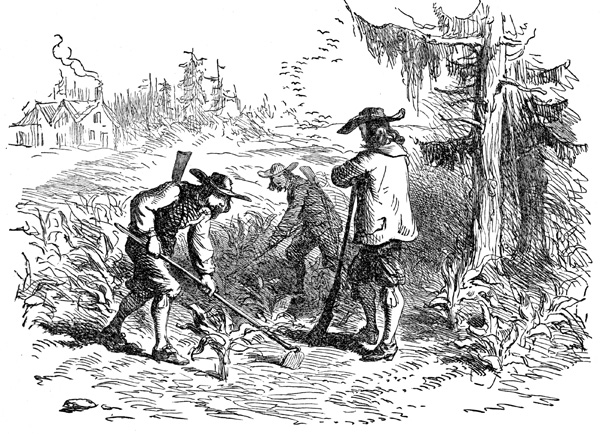 the major changes that america experienced during the mid 1800s The largest settlements of germans were in new york city, baltimore, cincinnati,   ethnic and anti-catholic rioting occurred in many northern cites, the largest.
