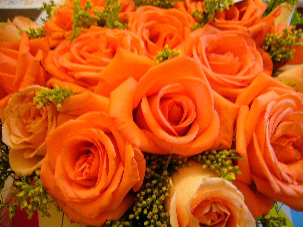 Feliz Aniversario Tia Espanol: Feliz Aniversário Tia Oscarina