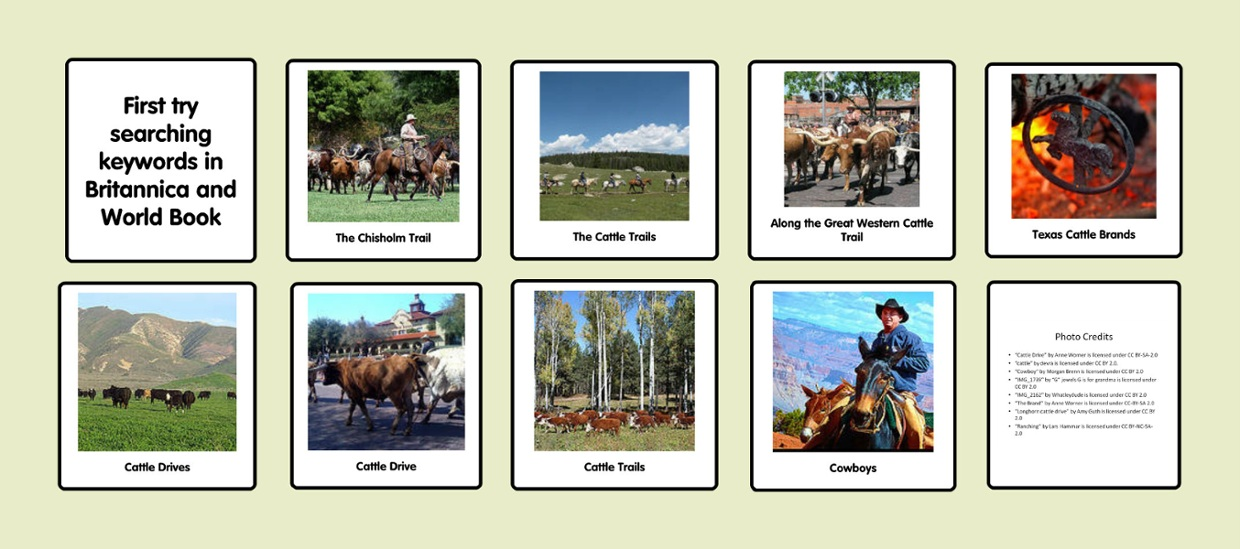 Cattle Drive  Project