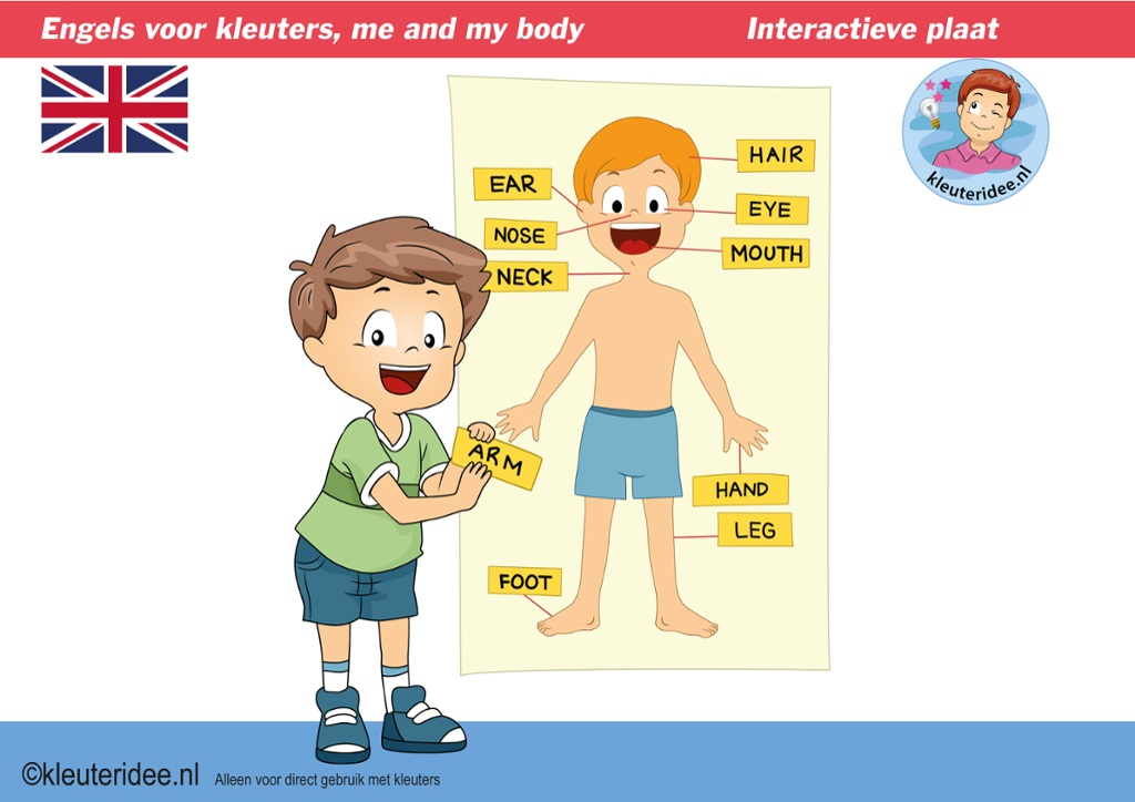 Engels voor kleuters, ik en mijn lichaam,  Kindergarten interactive English lessons, games and songs about 'me and my body'  for IBW en digiboard, kleuteridee.nl