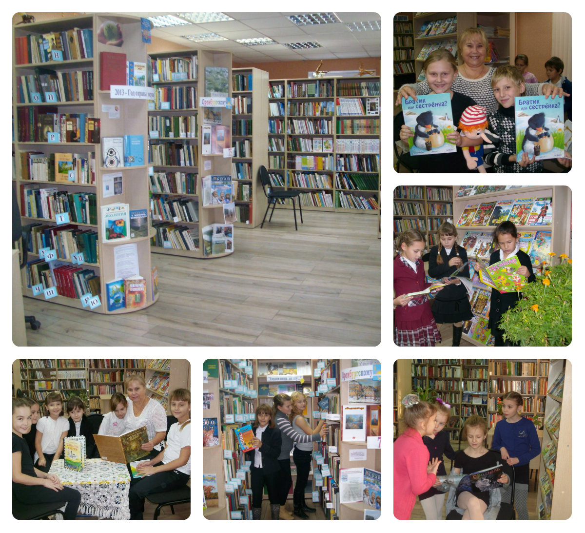П-Покровская сельская модельная библиотека http://veravar...