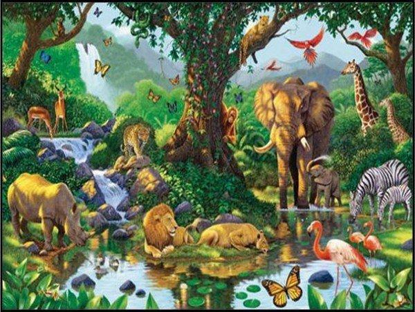 افلام كرتون حيوانات الغابة