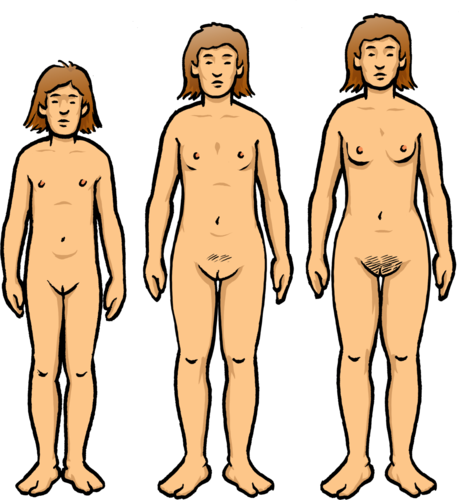 The Facts About Puberty: Voice Changes, Pubic Hair Growth