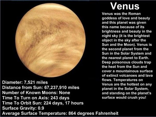 Some Awesome Facts About Venus Thinglink