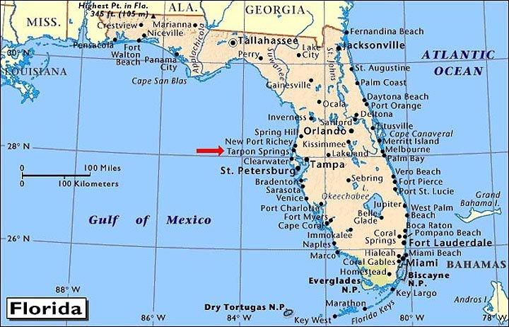 Cedar Beach Florida Map