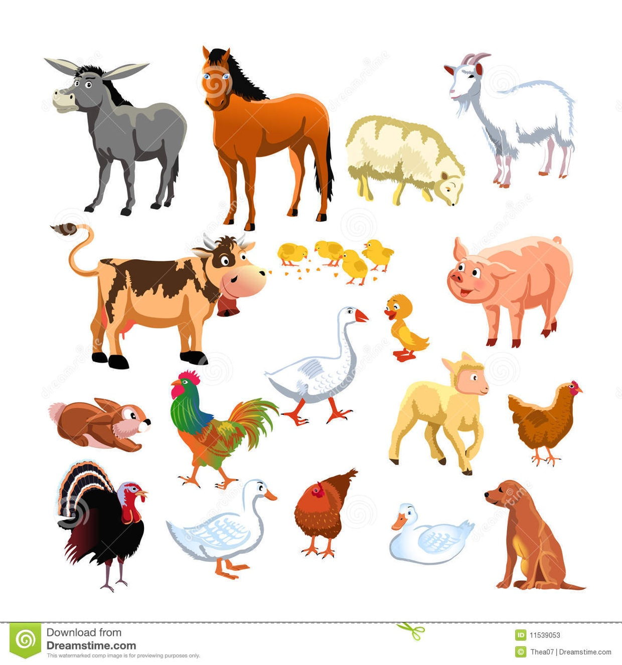 song about animals exercises about animals